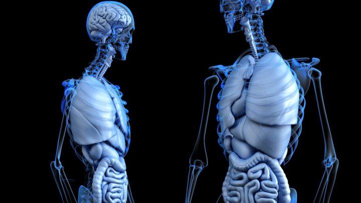 Medicina digitale e malattie dell'apparato digerente: una sfida oltre la pandemia SARS-CoV-2